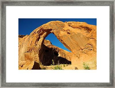 Corona Arch - Utah Framed Print by Gary Whitton