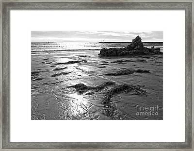 Corona Del Mar Coast - Black And Awhite Framed Print by Gregory Dyer