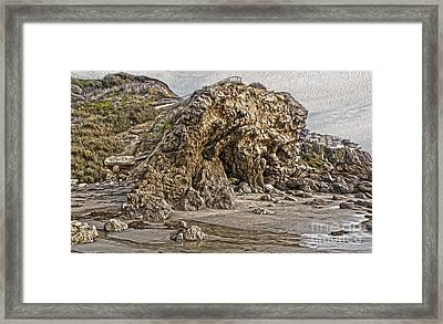 Corona Del Mar Sea Cave Framed Print by Gregory Dyer