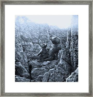 Corona Del Mar Seals Statue - Black And White Framed Print by Gregory Dyer