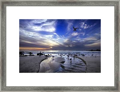 Corona Del Mar Framed Print by Sean Foster