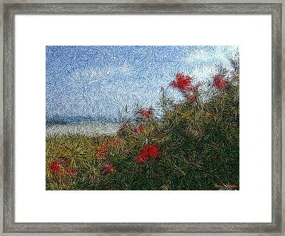 Coronado Beach Flowers Framed Print