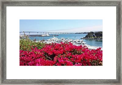 Coronado Bridge Framed Print by Jasna Gopic