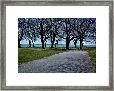Coronation Park Framed Print by Nicky Jameson
