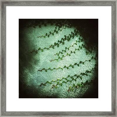 Correpto Framed Print