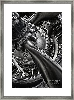 Corsair Framed Print by Bryan Keil