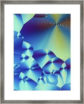 Cortisol Crystals Framed Print by Alfred Pasieka