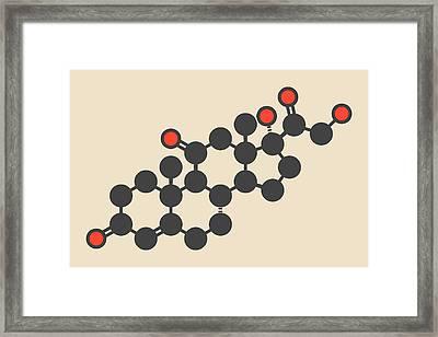 Cortisone Stress Hormone Molecule Framed Print by Molekuul