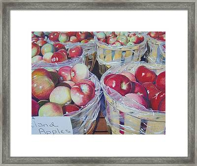 Cortland Apples Framed Print