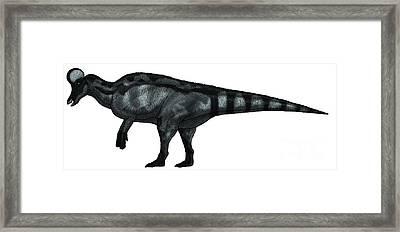 Corythosaurus, A Large Hadrosaurid Framed Print by Vitor Silva