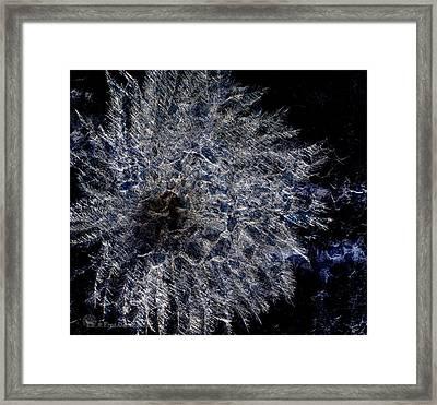 Cosmic Dryas Framed Print