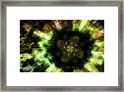 Cosmic Solar Flower Fern Flare Framed Print by Shawn Dall
