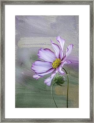 Cosmo Of The Garden Framed Print