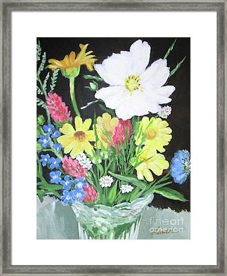 Cosmos And Her Wild Friends Framed Print
