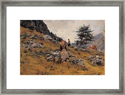 Cosola Demetrio, Pasture Framed Print by Everett
