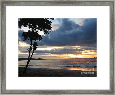 Framed Print featuring the photograph Costa Rica Palm Sunset - Seascape by Shelia Kempf
