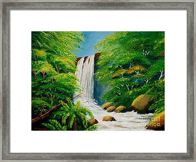 Costa Rica Waterfall Framed Print