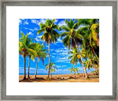 Costa Rican Paradise Framed Print by Michael Pickett
