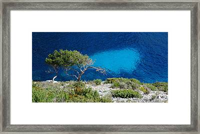 Pine Trees At Azure Waters Framed Print