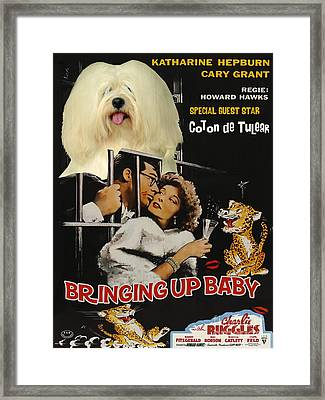 Coton De Tulear Art Canvas Print - Bringing Up Baby Movie Poster Framed Print by Sandra Sij
