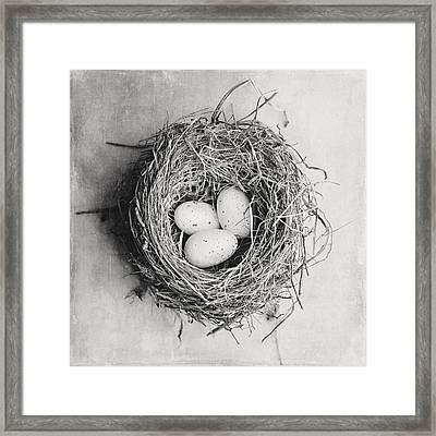 Cottage Bird's Nest In Black And White Framed Print by Lisa Russo