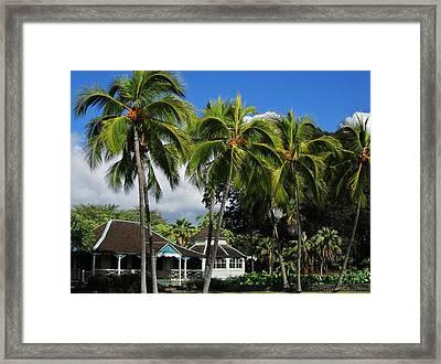 Cottage Of Kamehameha The V Framed Print by Craig Wood