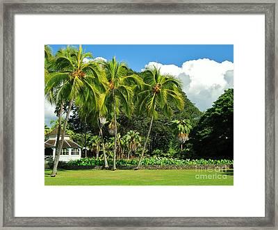 Cottage Of Kamehameha V Framed Print by Craig Wood
