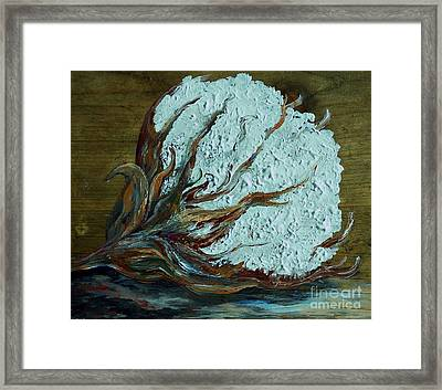 Cotton Boll On Wood Framed Print by Eloise Schneider