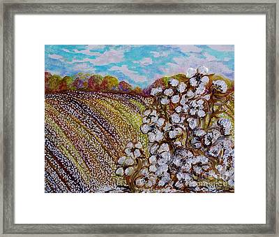 Cotton Fields In Autumn Framed Print by Eloise Schneider