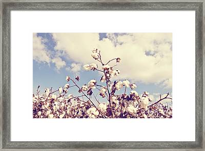 Cotton In The Sky With Filter Framed Print