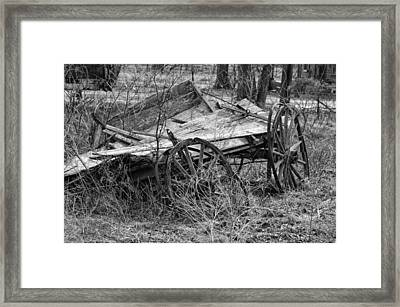 Cotton Picking Tired Framed Print by Kelly Kitchens