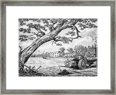 Cotton Plantation Framed Print by Bildagentur-online/tschanz
