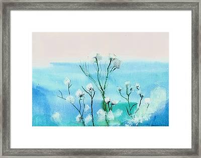 Cotton Poppies Framed Print by Anil Nene