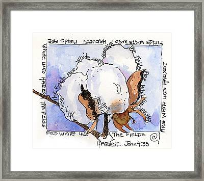 Cotton Framed Print by Suzy Pal Powell