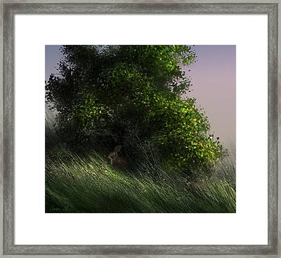 Framed Print featuring the digital art Cottontail by Aaron Blaise