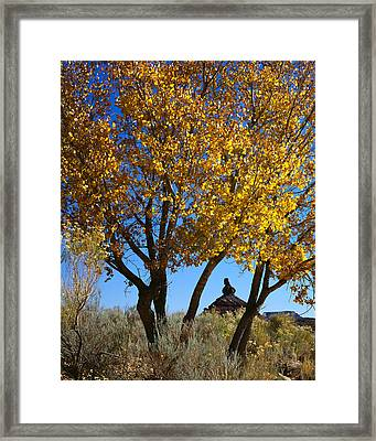 Cottonwood And Nipple Butte-v Framed Print