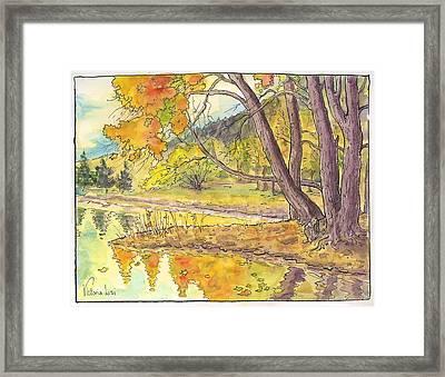 Cottonwood Cove Framed Print