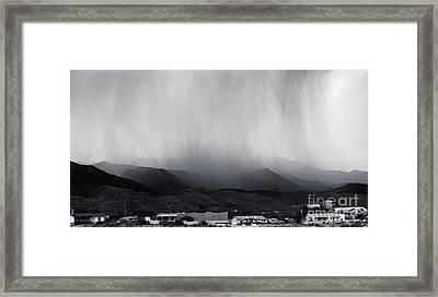 Cottonwood Rain Framed Print by Arne Hansen