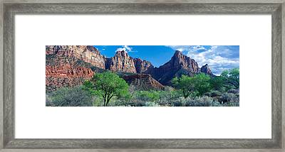 Cottonwood Trees And The Watchman, Zion Framed Print by Panoramic Images