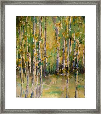 Cottonwoods Framed Print by Robin Miller-Bookhout