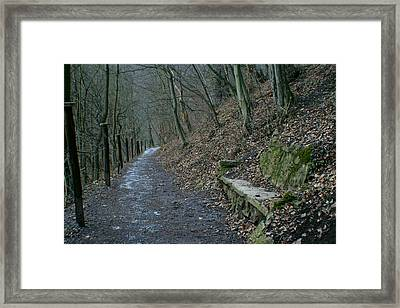 Framed Print featuring the photograph Couch In Nature by Jon Emery