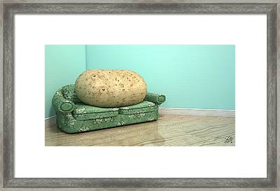 Couch Potato On Old Sofa Framed Print by Allan Swart