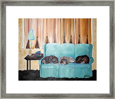 Couch Potatoes Framed Print by Gail Daley