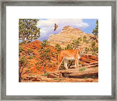 Cougar - Don't Move Framed Print by Crista Forest