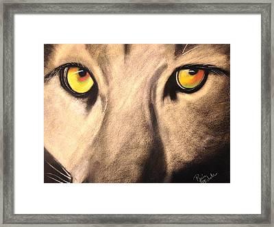 Cougar Eyes Framed Print by Renee Michelle Wenker