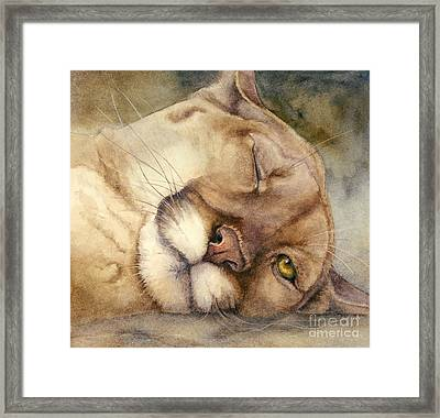 Cougar    I See You     Framed Print by Bonnie Rinier