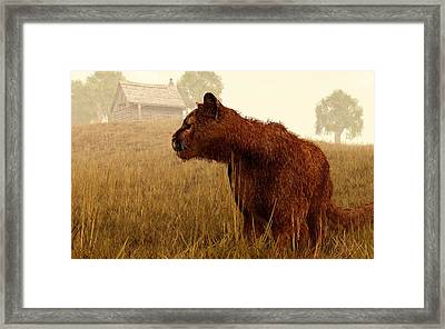 Cougar In A Field Framed Print by Daniel Eskridge