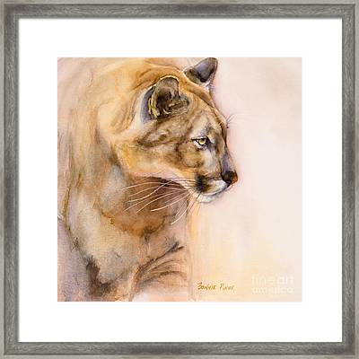 Cougar On The Prowl Framed Print