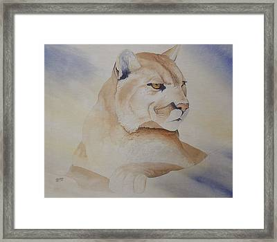 Cougar On Watch Framed Print