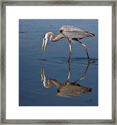 Could That Be How I Really Look Framed Print by Geraldine Alexander